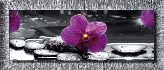 ORCHID IN BLACK - Argento