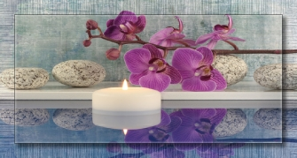 Orchid in Blue