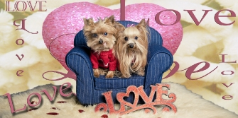 Dog Lovers in pink