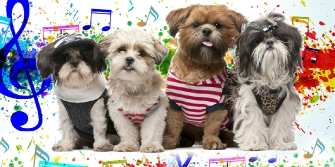 Dogs in music